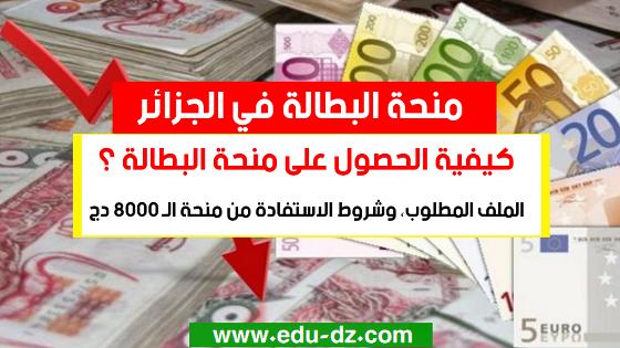 كيفية الحصول على منحة البطالة - Bourse e chomage en algerie